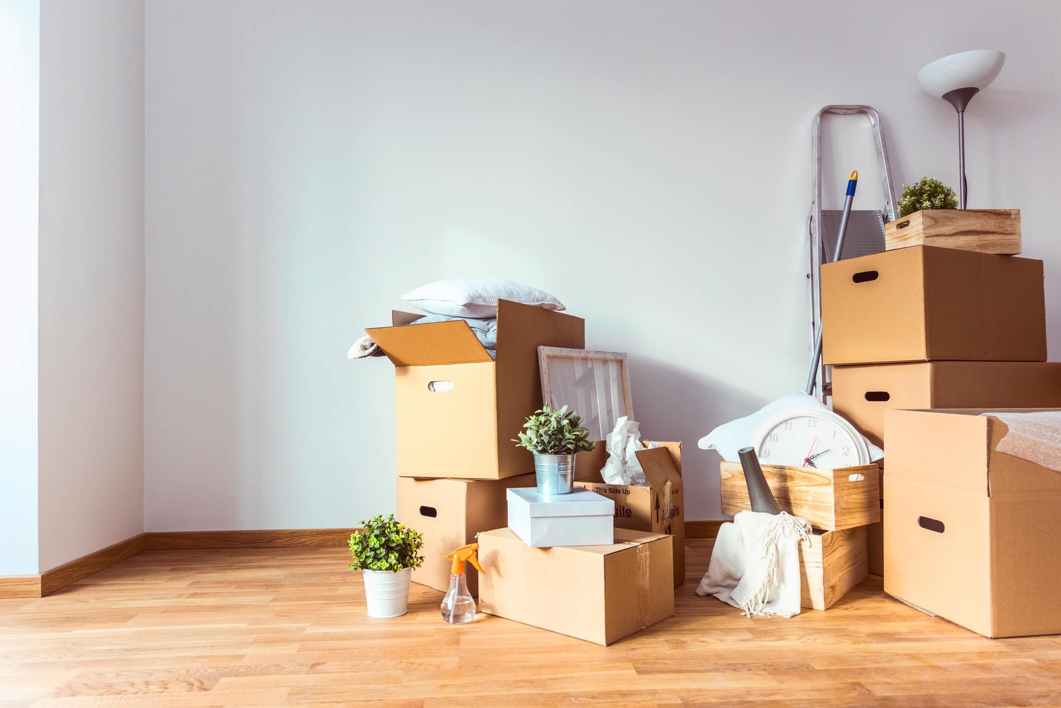 Packed Boxes Sitting In A New Apartment